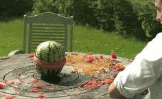 Watermelon vs Elastic Bands