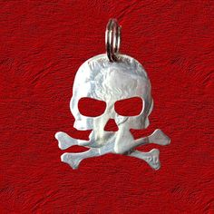 Skull And Crossbones Coin Necklace Or Key Ring