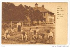 Black kids pick strawberries, from PENN SCHOOL, St Helena Island, South Carolina, 00-10s - Delcampe.com
