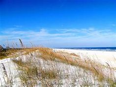 Anastasia state park near St. Augustine, FL. Camping practically on the beach, beautiful boardwalk, nature galore, and pavilions that can be used for outdoor wedding receptions.