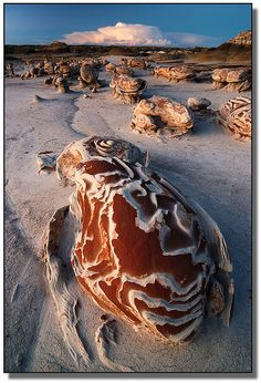 New Mexico - Never been here. Never even heard of this place. Looks amazing! Bisti Wilderness - New Mexico Places To Travel, Places To See, Beautiful World, Beautiful Places, Foto Nature, Dame Nature, Paraiso Natural, Land Of Enchantment, Amazing Nature