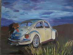 Beetle at sunset