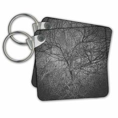 DYLAN SEIBOLD - PHOTOGRAPHY - BLACK AND WHITE TREE - Key Chains - set of 2 Key Chains (kc_244536_1)