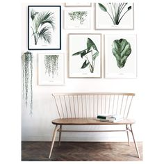 """939 Likes, 24 Comments - Maaike Koster / My Deer Art (@mydeernl) on Instagram: """"Our new collection is doing great! I am one happy and grateful woman!! #botanics #artprints"""""""