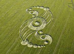 Diseños de círculos en cultivos > Choosa.net