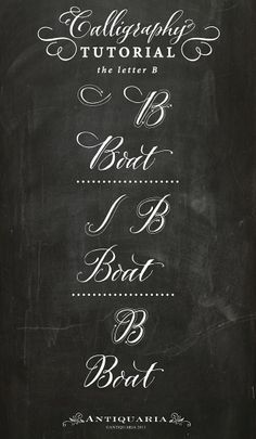 "Antiquaria: Calligraphy Tutorial | the Capital Letter ""B"""