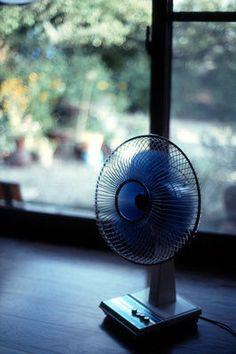 Old Japanese fan  扇風機