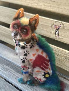 Rainbow Fairies, Dog Haircuts, Cute Cats And Kittens, Dog Grooming, Dog Love, Cute Animals, Fairy, Teddy Bear, Make It Yourself