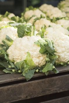 How to Grow Cauliflower in Containers - Great for cauliflower garlic mashed potatoes, cauliflower hash browns, cauliflower pizza crust, roasted cauliflower, etc - has biotin which is great for strengthening hair and nails