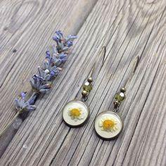 Daisy earrings  Pressed flower jewelry  real daisy di MissMayoShop