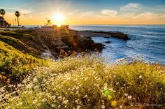 My picture from La Jolla Cove, San Diego, CA