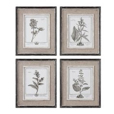 Uttermost Casual Grey Study Framed Art Set/4 - Overstock™ Shopping - Top Rated Uttermost Prints