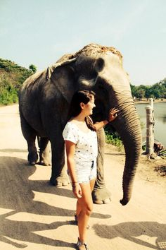 Interact with elephants on this exciting volunteer project in Thailand