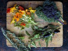 Lidové léčení jednotlivých nemocí – recepty (bylinky) Nordic Interior, Russian Recipes, Korn, Detox, Health Fitness, Herbs, Gardening, Fall, Plants