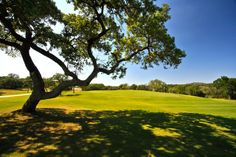 Beautiful oak trees are scattered throughout Vaaler Creek Golf Club in the Texas Hill Country.