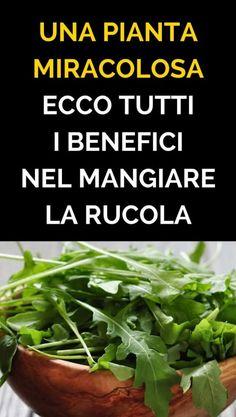 In questo articolo esaminiamo una delle verdure più consumate e più apprezzate in Italia, la rucola, orughetta, ecco cosa sapere e quali sono i suoi Natural Life, Natural Health, In Natura, Detox Recipes, Antipasto, Finger Foods, Fat Burning, Natural Remedies, Burns
