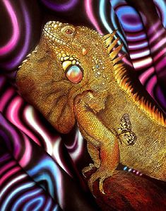 Body art illusion by Craig Tracy Craig Tracy, Psy Art, Finger Painting, Painting Art, Paintings, Illusion Art, Mundo Animal, Skin Art, Face And Body