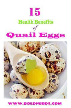 Here are 15 good benefits and some reasons why you should eat more quail eggs. Quail eggs are very nutritious and this post will make you eat quail eggs daily. Please don't eat too much, there might not be enough for everyone. Quail Eggs Benefits, Health Benefits Of Eggs, Quail Recipes, Egg Recipes, Quail Eggs For Sale, Pickled Quail Eggs, Dinner Party Appetizers, Raising Quail, Egg