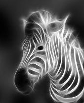 Zebra Fractal Counted Cross Stitch Pattern - Digital Art Design - Exquisite Image - Very Large Needlework - Stitch Count: 300 x 250 Zebras, Zebra Pictures, Zebra Art, Black N White Images, Arte Pop, Animals Images, Art Design, Counted Cross Stitch Patterns, Fractal Art