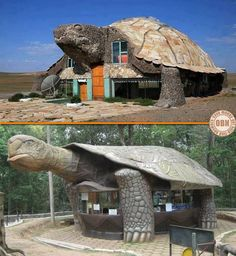 What NICE word would you use to describe these tortoise buildings? Unusual Buildings, Interesting Buildings, Amazing Buildings, Amazing Houses, Turtle Homes, Crazy Houses, Unique Architecture, House Architecture, Unusual Homes