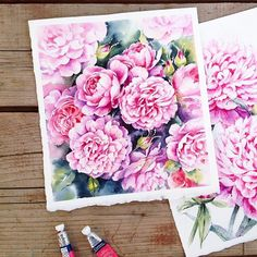 Pink roses and peonies  arches Torchon paper 300gsm from @cansonpaper  amazing paper for any type of flowers and Winsor&Newton watercolors @winsorandnewton  I used my favorite permanent rose, rose madder, gold green  I really love this green! Actually I have just two greens :) permanent green and gold green