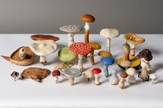 papier-mache mushrooms and toadstools of all colors 19th century papier mache models from Germany, photo Paul Atkins
