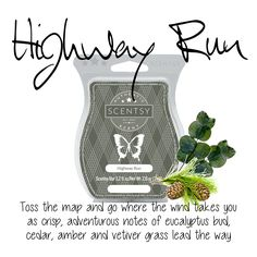Seaberry Della 3 Ounce Scented Wax Melts