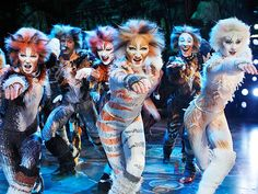 Quotes from everyone's favorite Broadway shows. I'll be editing pictures from actual Broadway shows, along with random pictures that work with certain quotes. Use this search box to find your favorite. Cats Musical, Musical Theatre, Theatre Nerds, New York Broadway, Broadway Shows, Broadway Theme, Shubert Theater, Jellicle Cats, Theatre Costumes