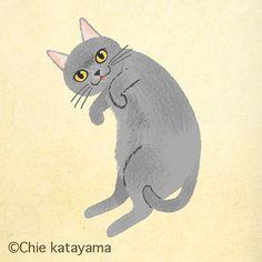 Cats works - Chie Katayama Illustration Cat Illustrations, Illustration Art, Dog Cat, Pet Dogs, Cat Aesthetic, Sleepy Cat, Cat Drawing, Animal Drawings, Cat Art