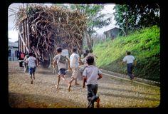 Boys chasing sugarcane truck by t13hman, via Flickr