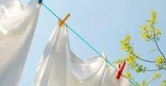 Χρησιμοποιείτε μαλακτικό ρούχων; Αν η απάντησή είναι ναι, τότε θα απογοητευτείτε, γιατί θα διαπιστώσετε ότι πληρώνετε υψηλότίμημα για να μυρίζουν όμορφα τα