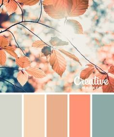 Gorgeous Palette Of Coral, Salmon, Satin Pink, Ivory, & Antique Teal Tones. Gorgeous Palette Of Cora Color Schemes Colour Palettes, Fall Color Palette, Colour Pallette, Color Combos, Fall Color Schemes, Interior Colour Schemes, Summer Color Palettes, Pastel Color Palettes, Decorating Color Schemes