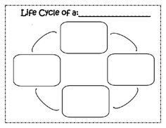 Lifecycle Blank Chart & Meal worm Cut/Paste Handout