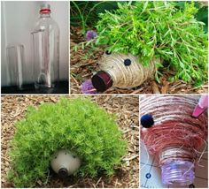 DIY Plastic Bottle Hedgehog Planter for Your Garden #diy, #gardening, #planter