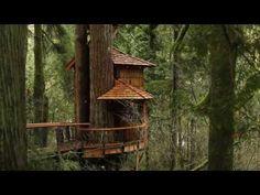 Lofthaven Treehouse Resort Hotel Zipline Near Lake Travis, Austin! Dallas San Antonio Houston - YouTube