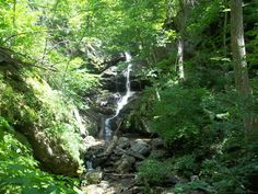 The Jones Run-Doyles River Hike in the Shenandoah National Park.  The Waynesboro Parks & Rec Department leads guided hikes here on occasion!
