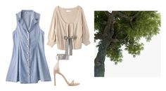 """""""Untitled #13322"""" by jayda365 ❤ liked on Polyvore featuring Stuart Weitzman"""