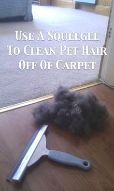 55 Must-Read Cleaning Tips and Tricks (I will never forget when @Dani Gibson brushed the carpet!)
