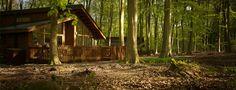 lik logcabin food forest - 1340×515