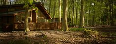 Log Cabin & Lodge Holidays - Blackwood Forest, Hampshire