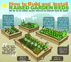 How to build install and irrigate raised garden beds