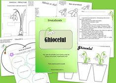 Ghiocelul - fise de lucru, jocuri, idei - EmaLaScoala Preschool Fine Motor Skills, Life Cycles, Fall Decor, Projects To Try, Paper Crafts, Classroom, Activities, How To Plan, 8 Martie