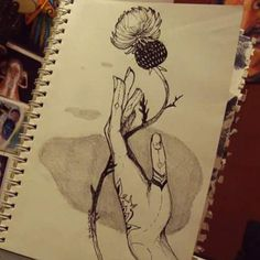 #dibujando #dibujo #draw #drawing #ilustracion #illustration #ilustraciones #arte #Art #flowers #flor #cardo
