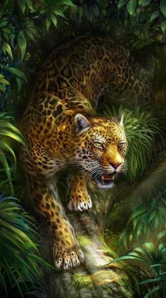 Jungle animals 01 jungle animals in the wild forest jungle animal green gold balloon garland jungle balloon garland balloon dec Jaguar Animal, Cheetah Animal, Leopard Wallpaper, Animal Wallpaper, Animal Memes, Funny Animals, Cute Animals, Beautiful Cats, Animals Beautiful