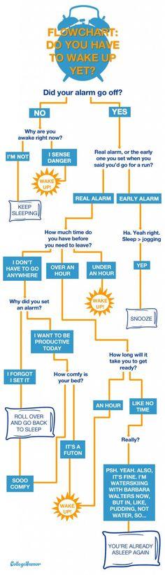 31 Best Funny Flowcharts Images On Pinterest Flowchart Hilarious