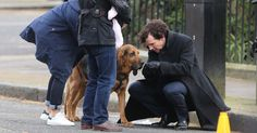 The actor was spotted on set alongside Martin Freeman with his four-legged friend while filming scenes for the BBC drama