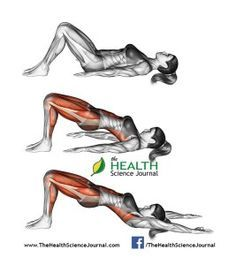 © Sasham   Dreamstime.com - Yoga exercise. Bridge Pose. Setu Bandhasana. Female