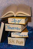 Cover To Cover Book Blog | Shy of Tomorrow Review