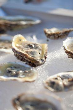 Classic Raw Bar ~ Oysters on the Half Shell {Peter Callahan, Photo: Mel Barlow}