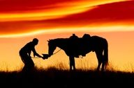 Cowboy and his horse at sunset  If you love horses: ~~~> www.happyhorsehealthyplanet.com